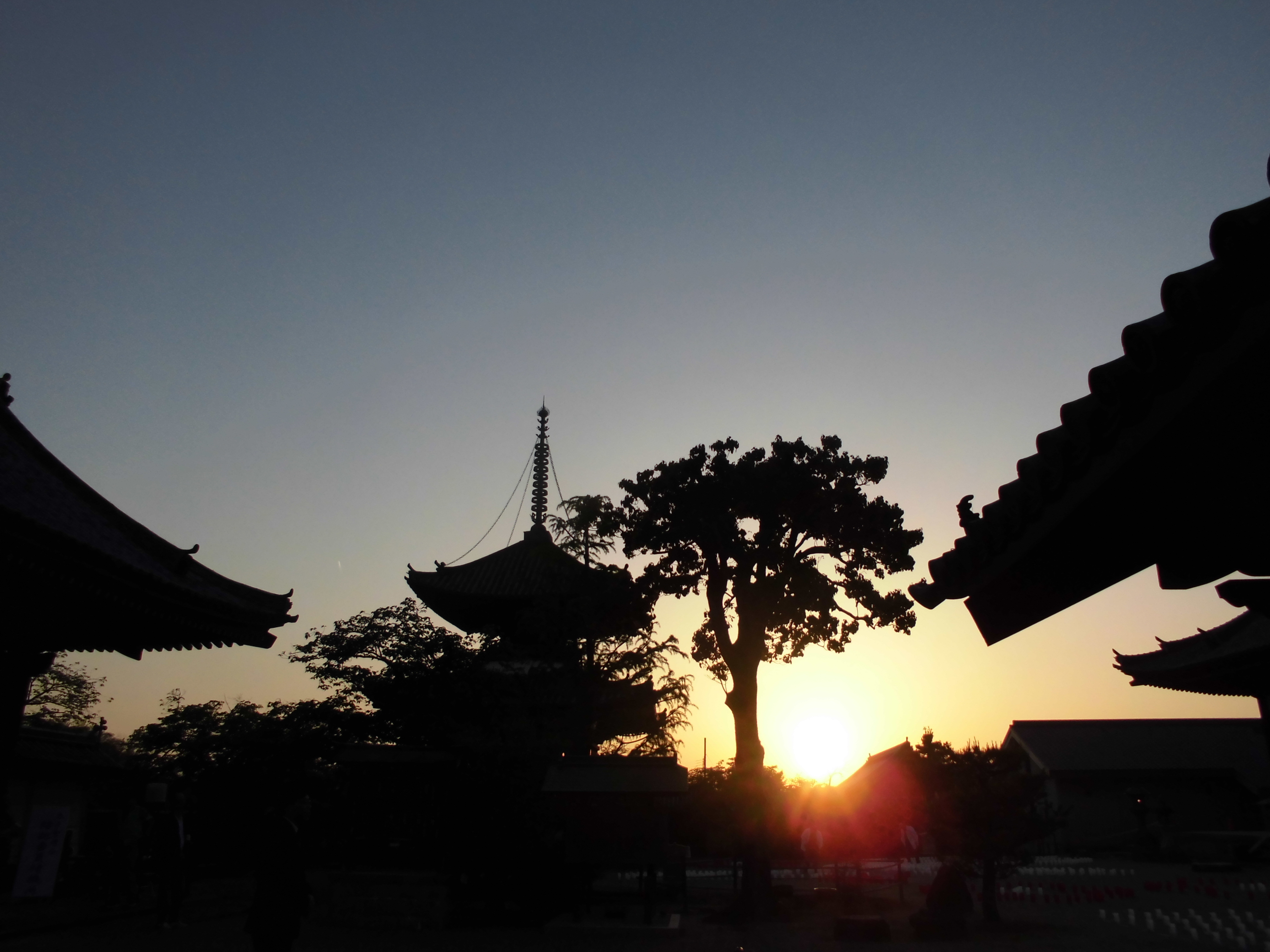 ここにもあった!!大阪、春の光のイベントに足を運んでみよう【太子聖燈会に行ってきました。by-VEGETAPSY】