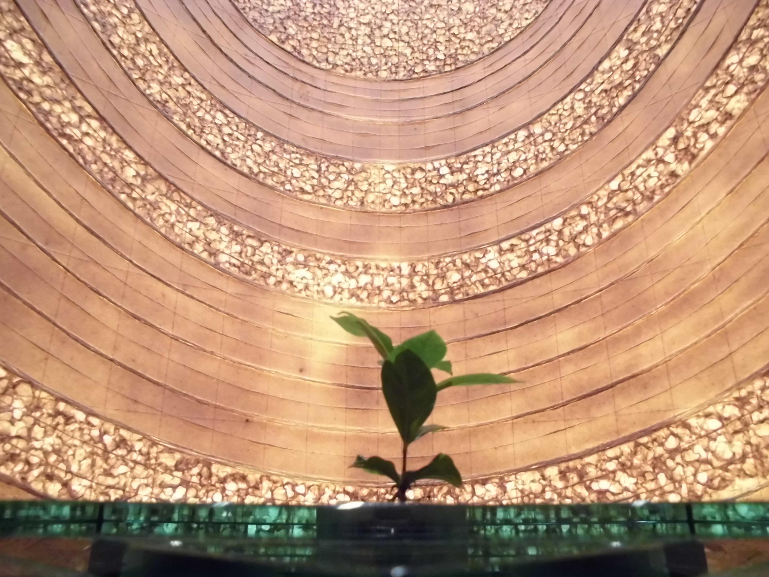 コーヒー豆のオリジナル焙煎体験!!職人の技を体感してみよう【UCCコーヒー博物館に行ってきました。by-VEGETAPSY】